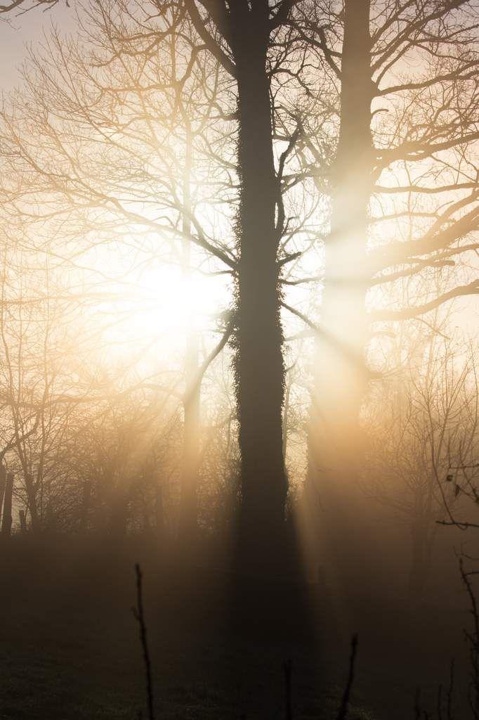 Lumières d'hiver en Aveyron