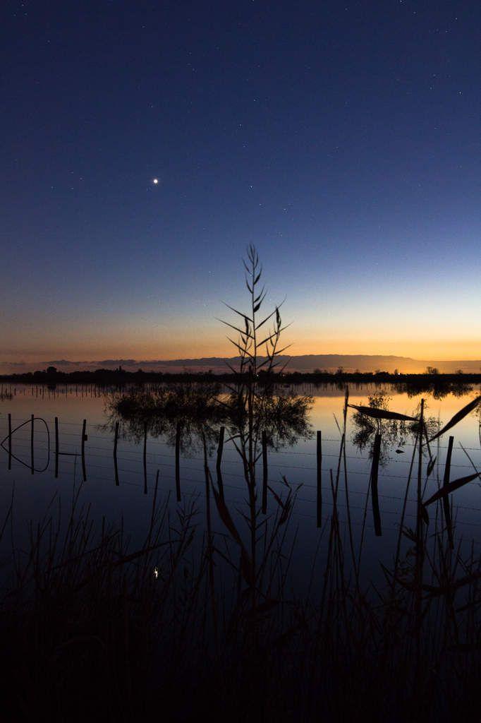 Coucher de soleil sur l'étang de l'or
