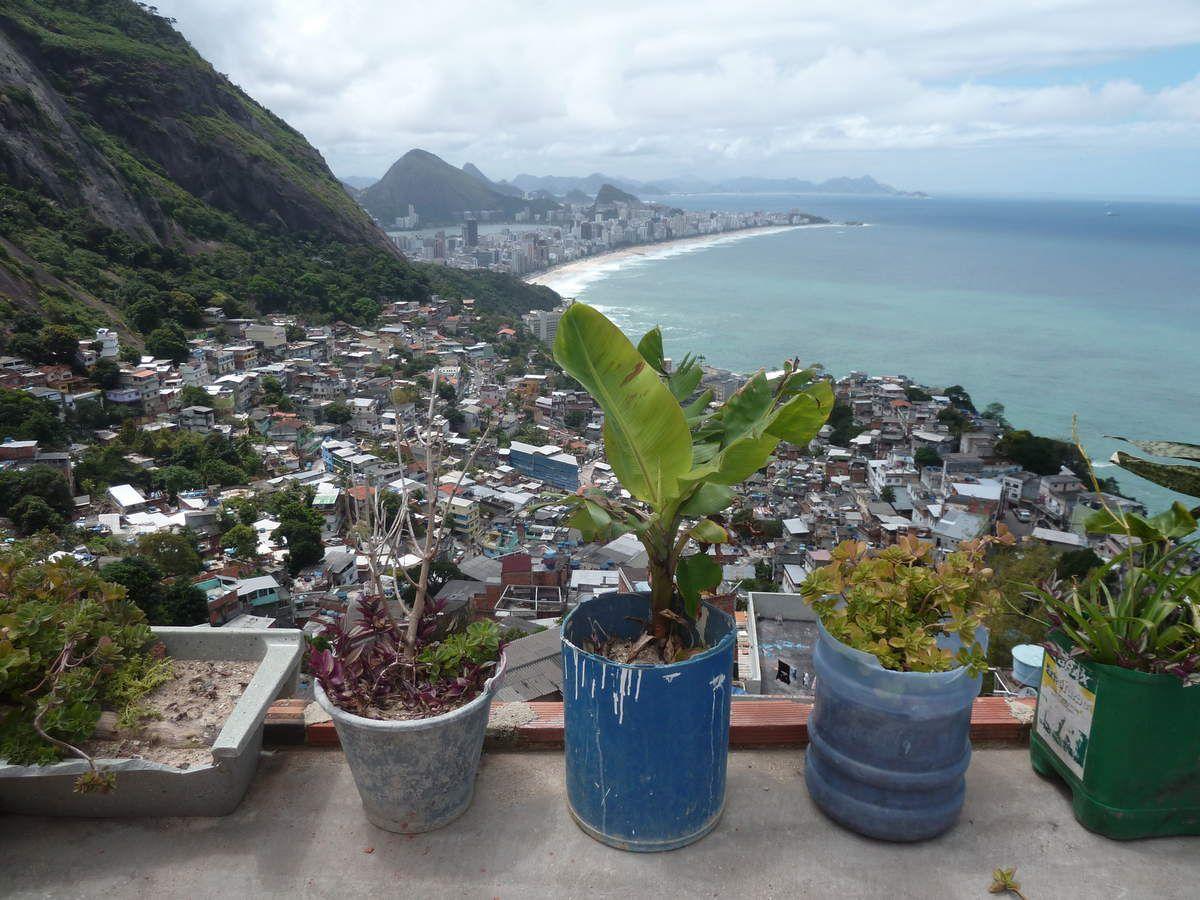Album 001 ) RIO