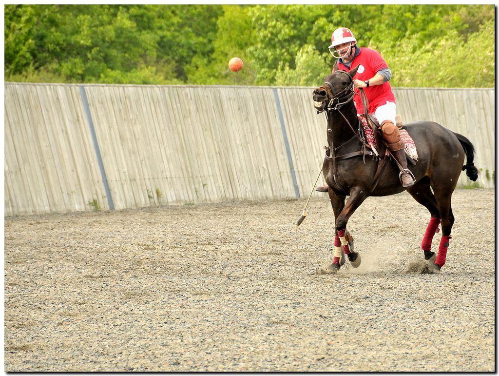 Sélection de mai 2015 : Brittany Polo Club