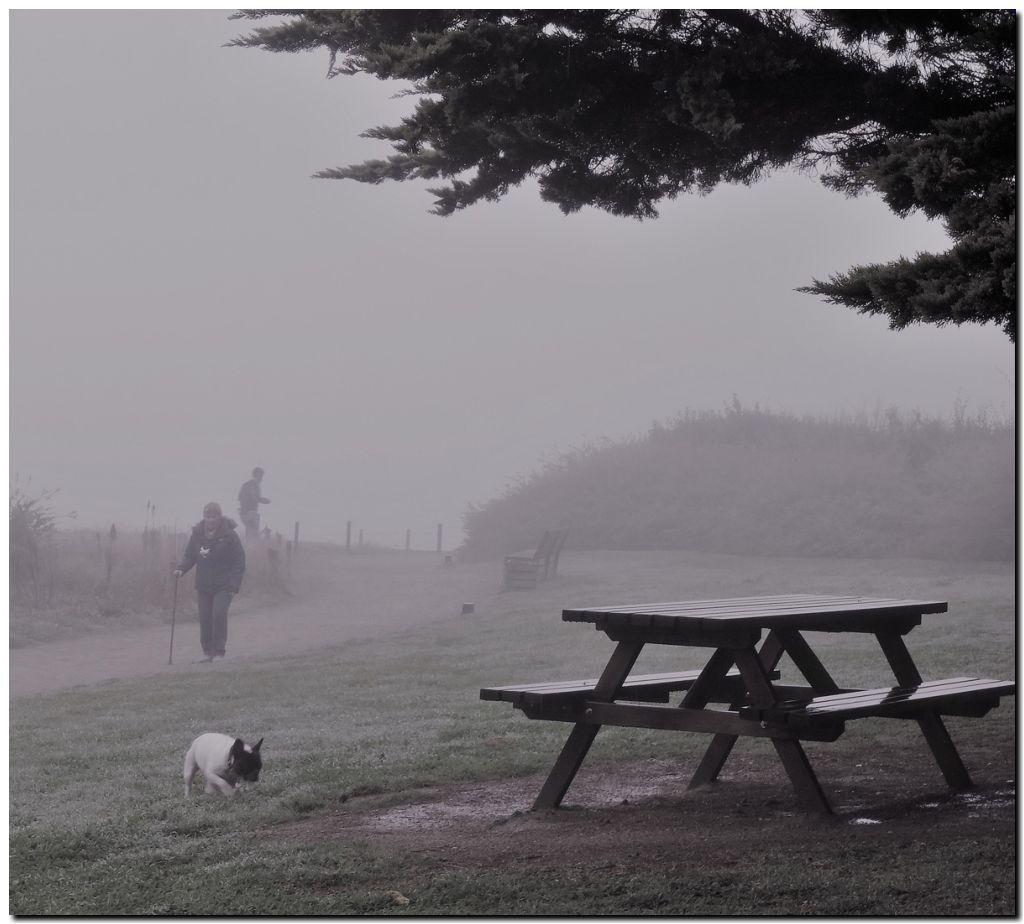 Sélection dernier trimestre 2016 : Brumes et brouillard