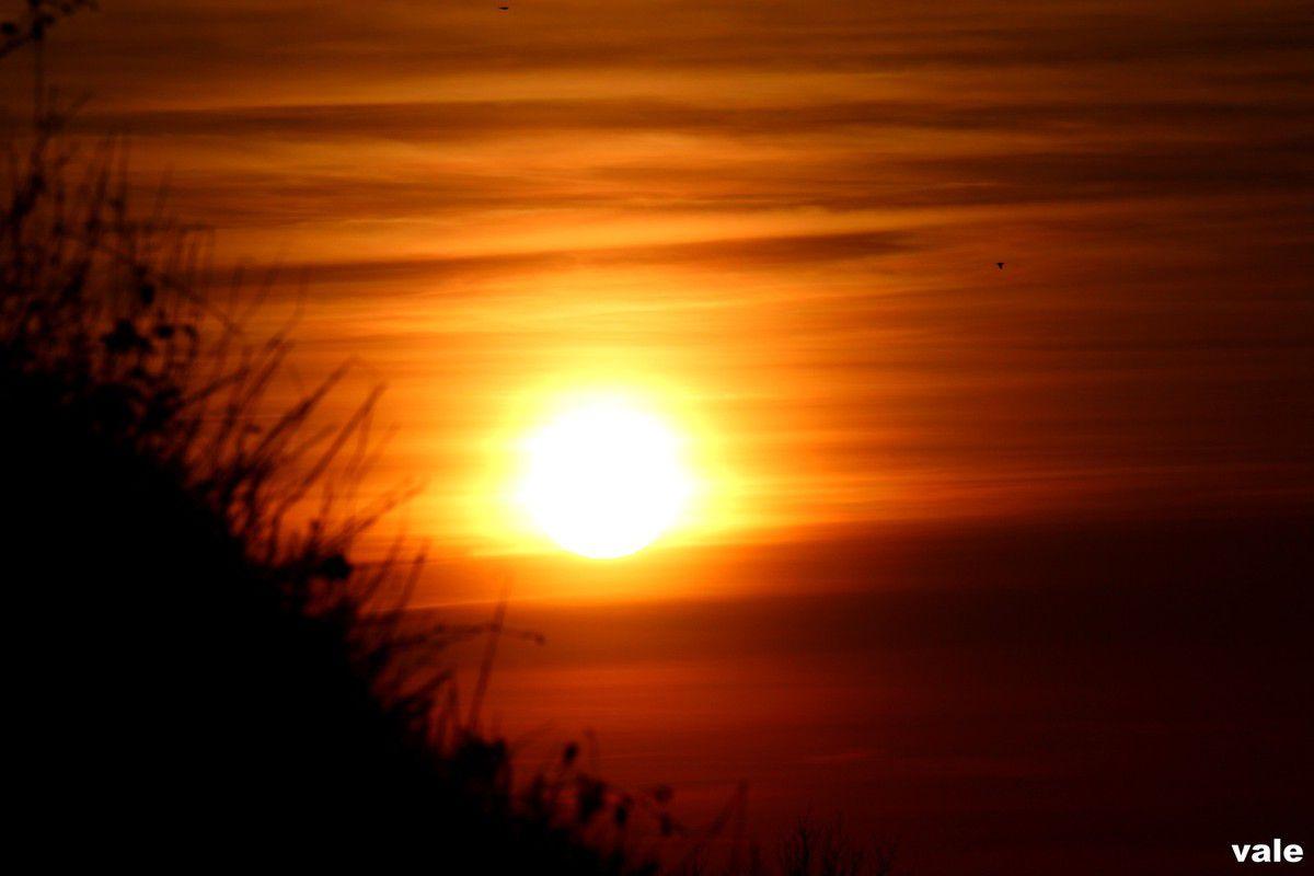 Mes photos coucher de soleil animaux nature p rigord vielle maison fleurs paysage autres mes - Coucher du soleil montpellier ...