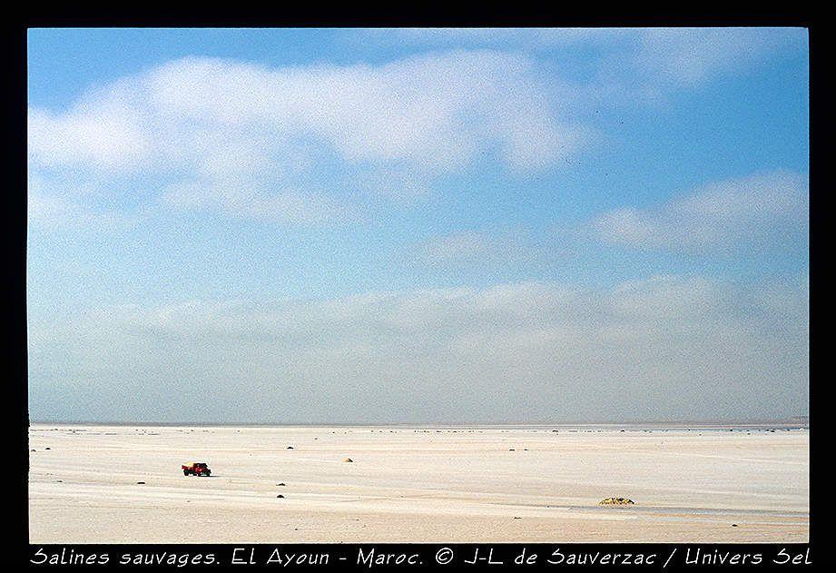 Les ramasseurs de sel dans le sud Maroc