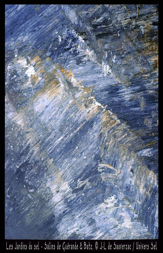 Les Jardins du sel. Salins de Guérande