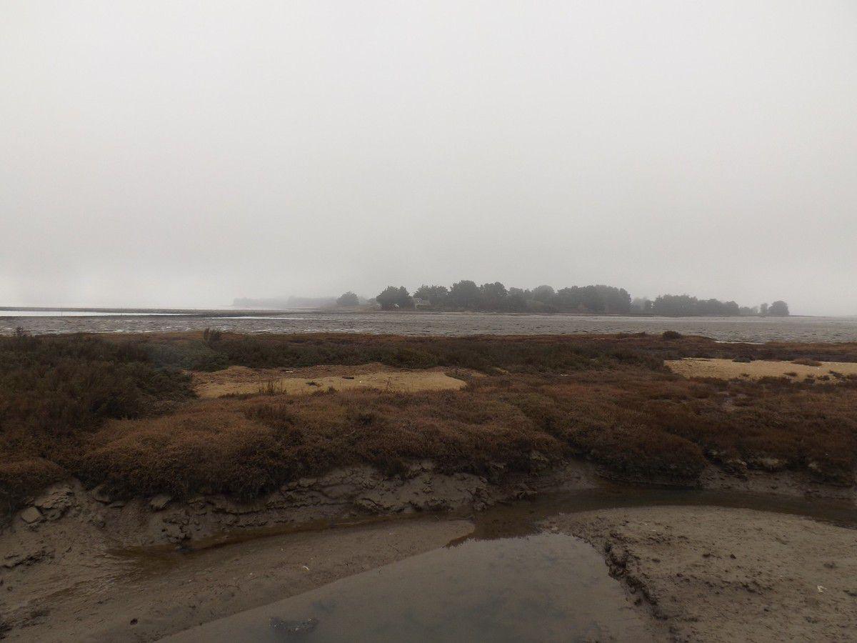 les eaux du golfe du Morbihan comme horizon...