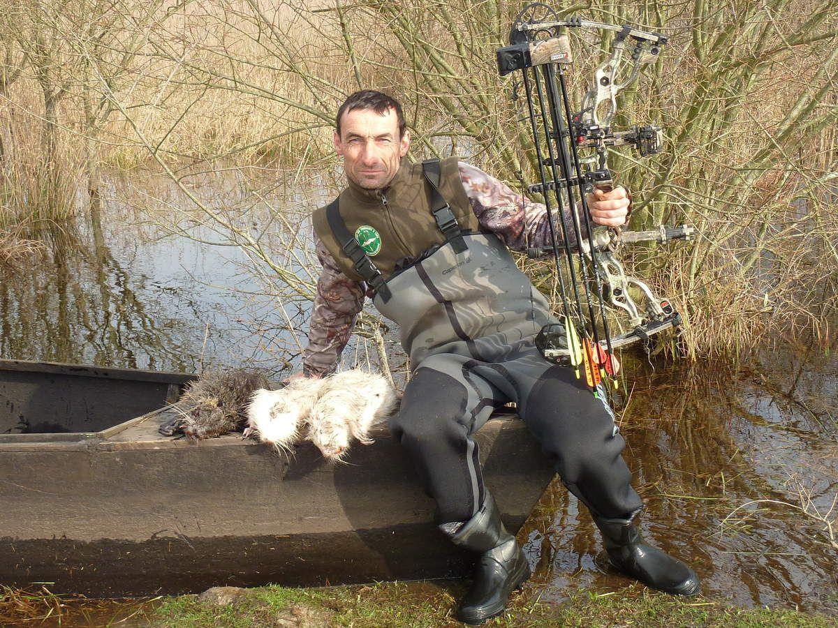 chasse aux ragondins blanc ou albinos en brière