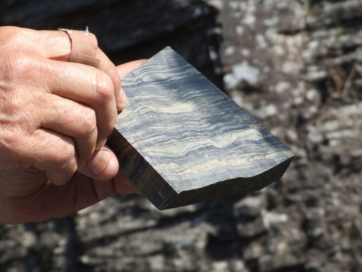 Comment remonter le temps sur 450 millions d'années... Photo D VANESPEN