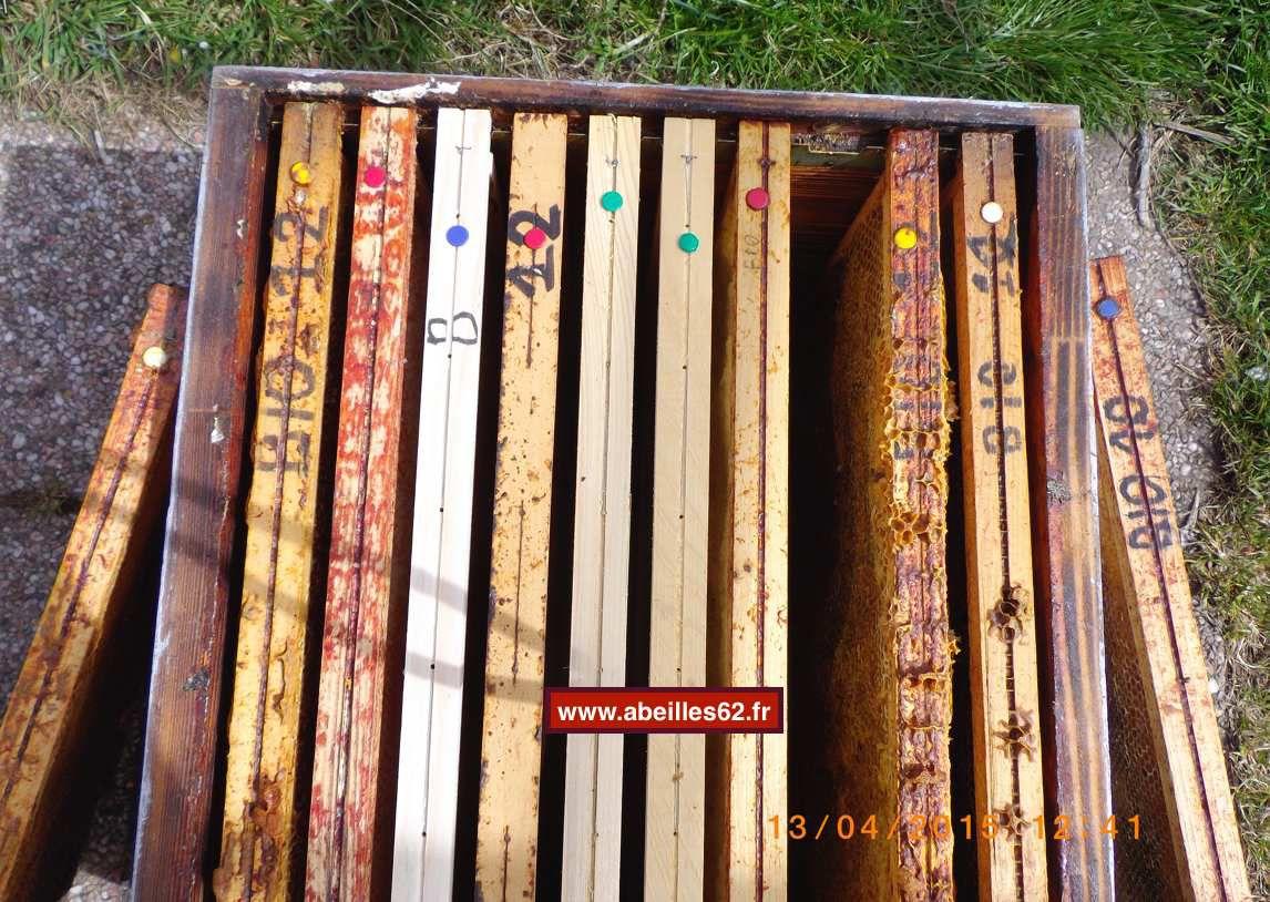 Photo N°6 - Faire glisser les cadres 8 et 9 en position 9 et 10