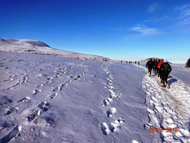 Trail blanc pour des Bipèdes en bleu