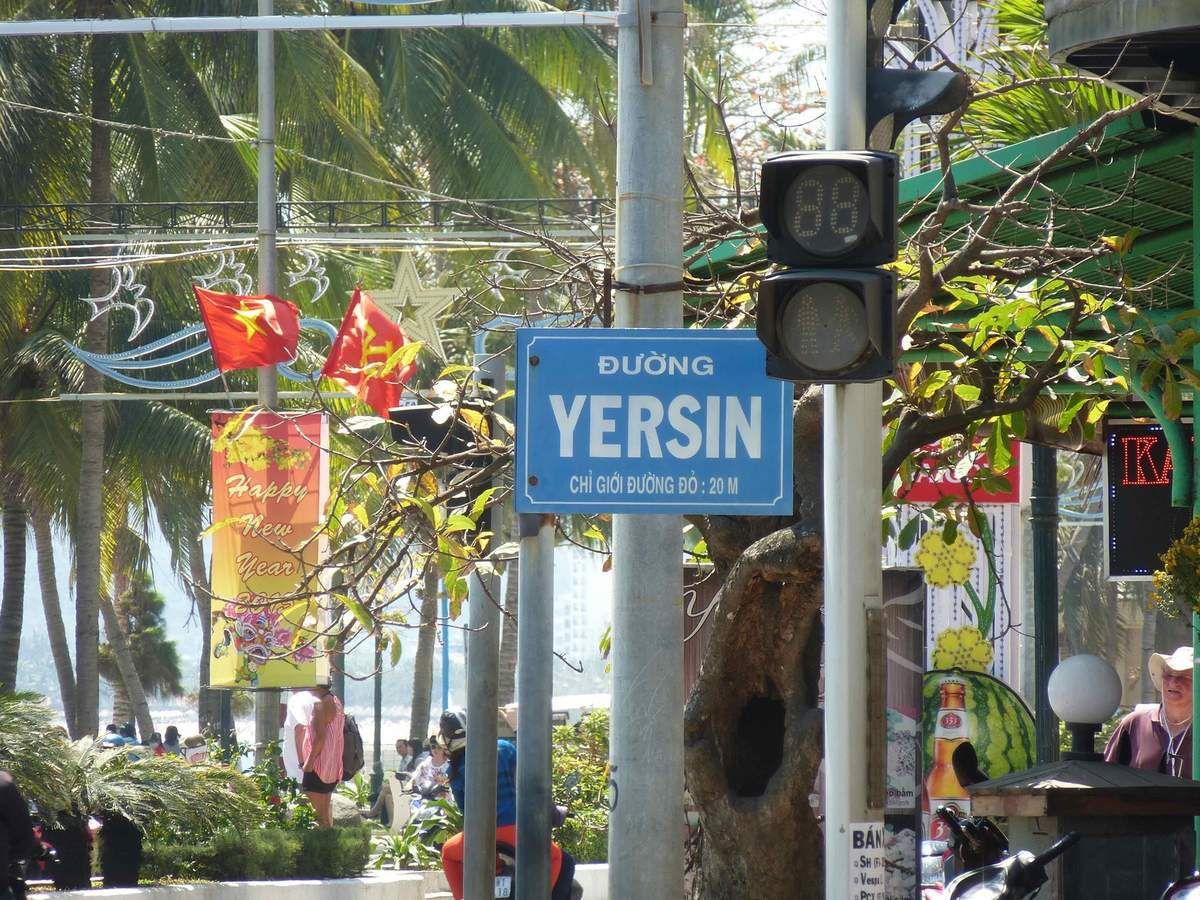 Sur les traces de Yersin