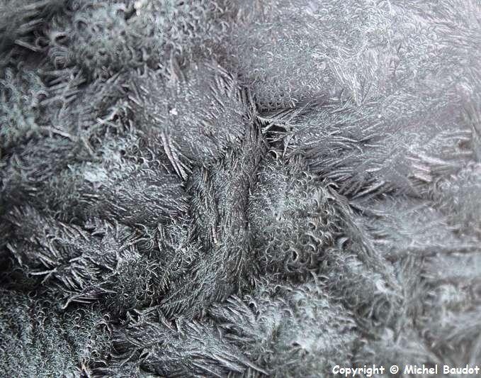 Effet du grand froid en décembre 2014
