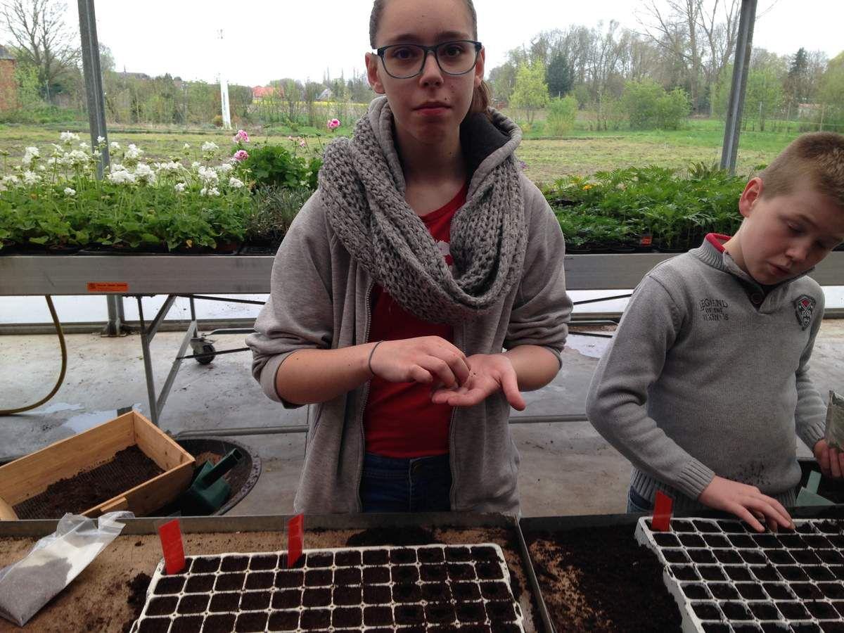 04 A2 Entretien du jardin potager Erasmus+
