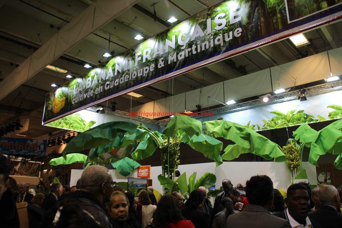 Le ministre de l'Agriculture, M. Stéphane Le Foll/Photos Isabelle Gratien/Afriquedomtomnews.com