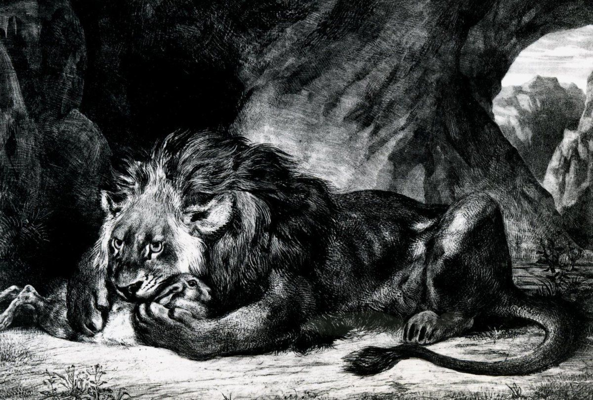 Lion de l'Atlas, Lithographie, 1832
