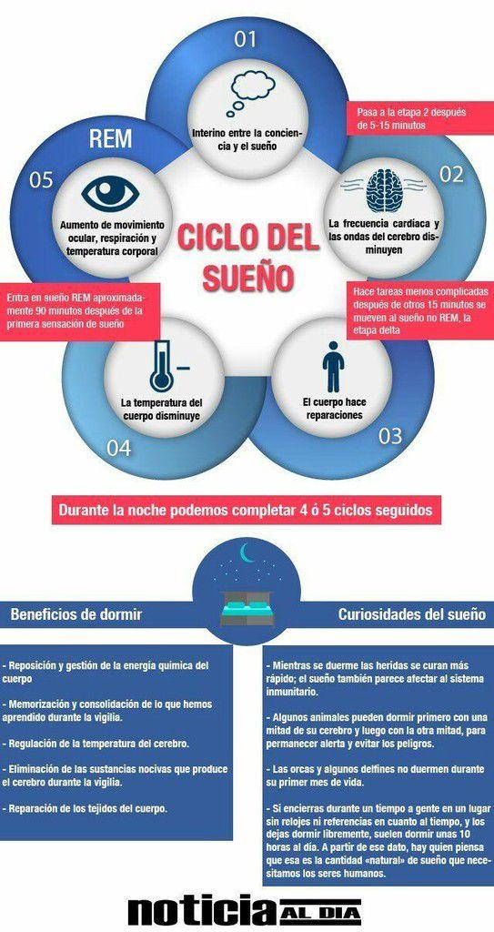 Ciclos del sueño y sus beneficios