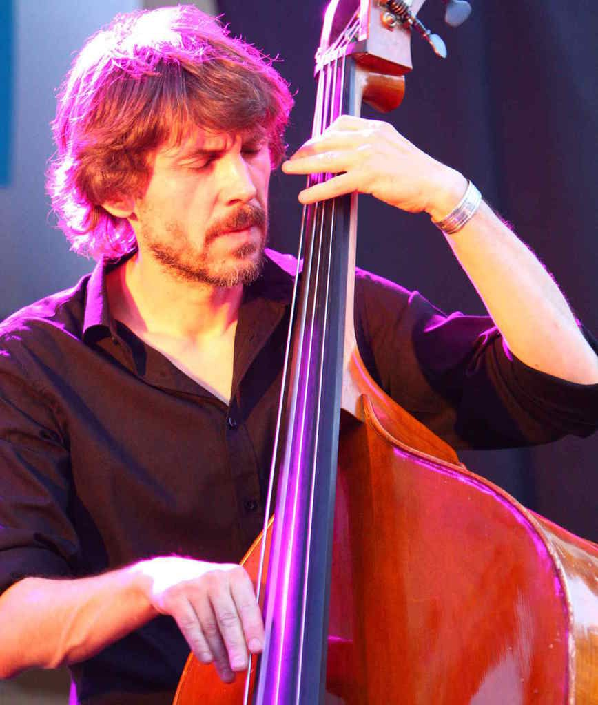 Cyrille Catois: basse-contrebasse