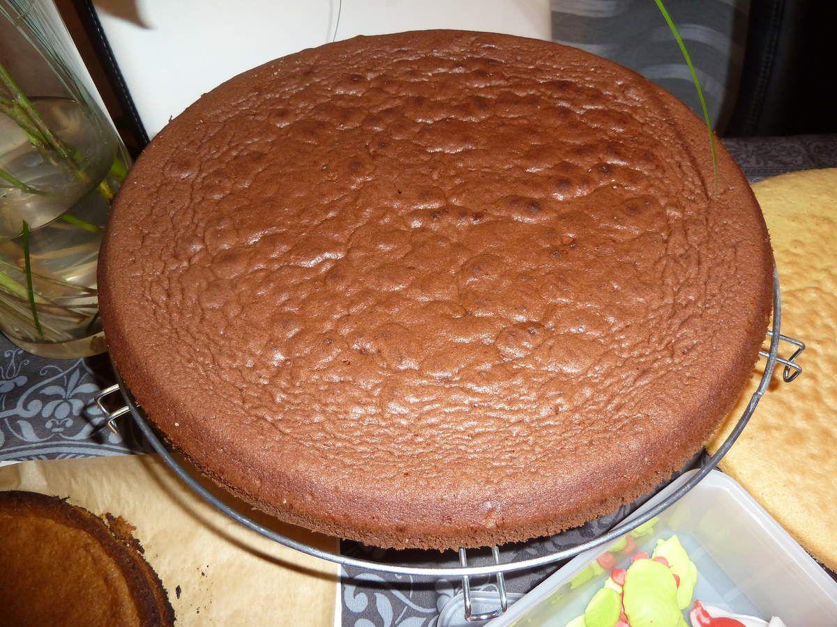 Gâteau Zodio, Vanille-Chocolat