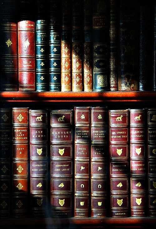 COMPENDIUM DES ARTICLES PUBLIES : 2ème SEMESTRE 2016