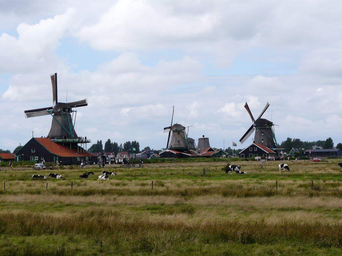 Ecomusée de Zaanse Schans