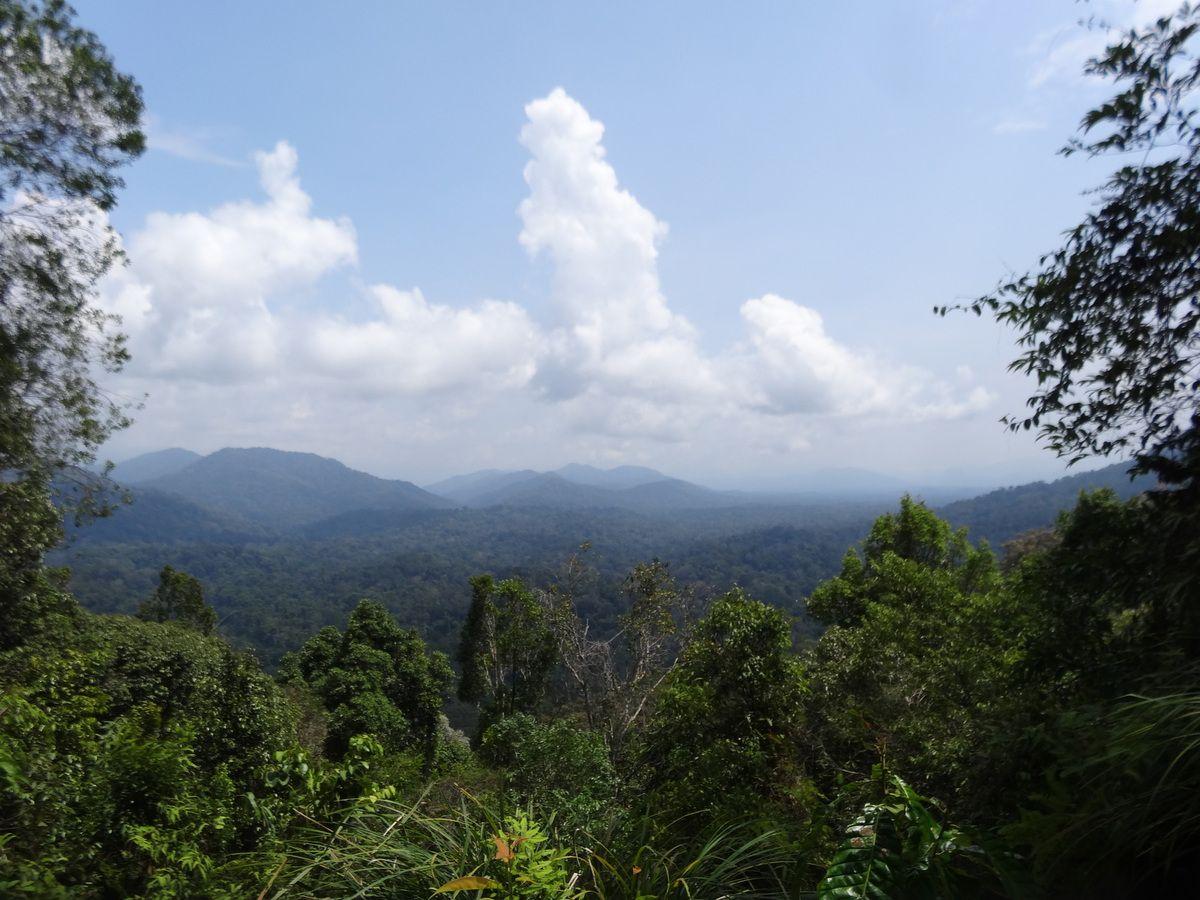 la Malaisie péninsulaire