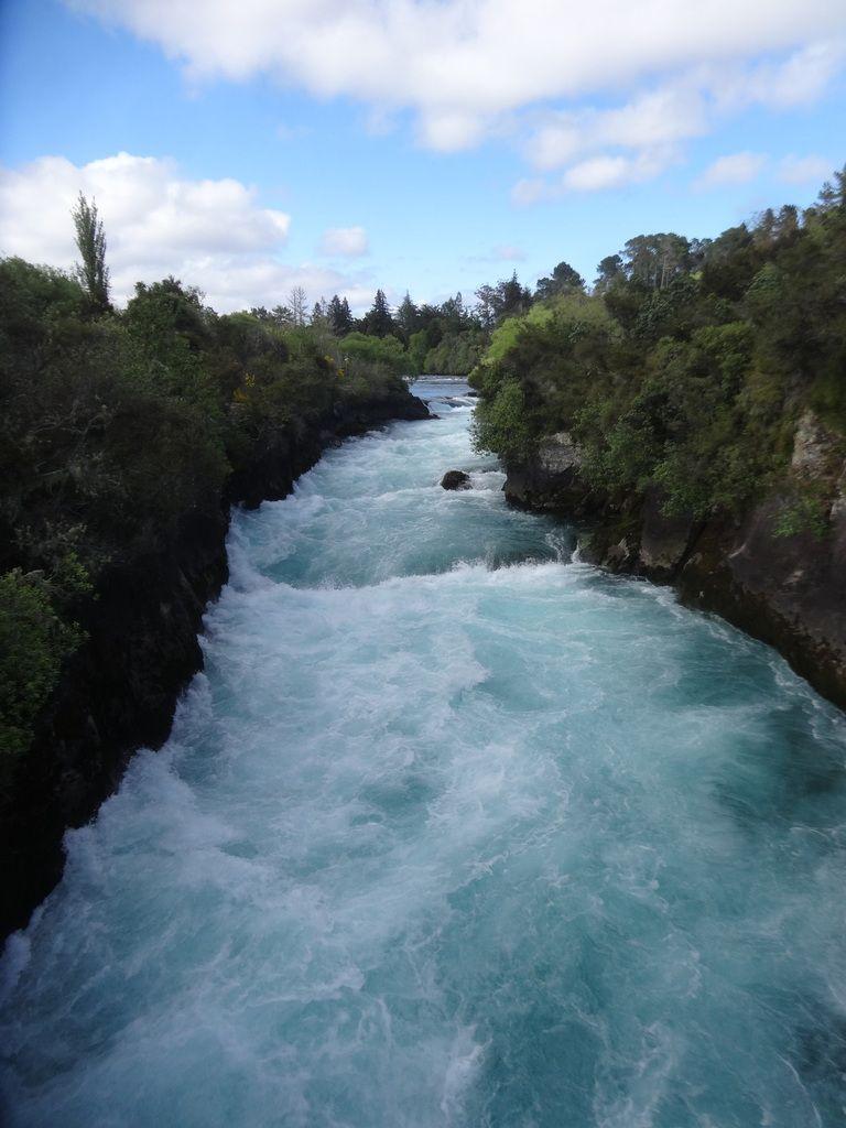 Nouvelle Zelande : ile du nord