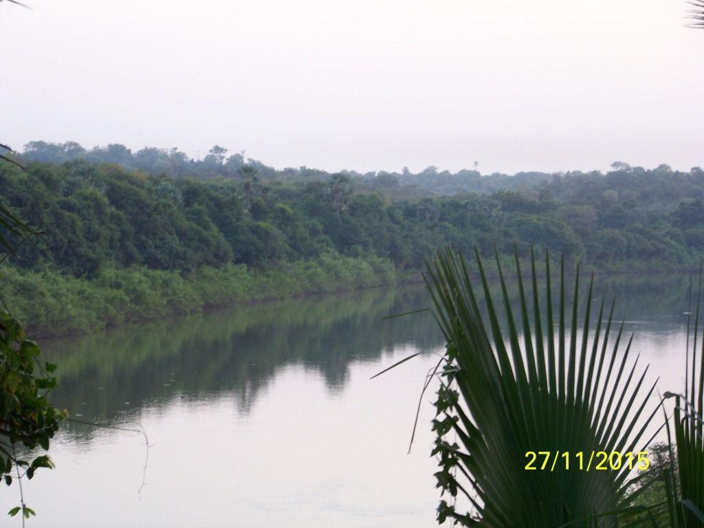 Nous avons décidé de rentrer dans le Parc Natiational du Nikolo-Koba à Dar Salam et de rejoindre Simenti où la terrasse de l'Auberge domine le fleuve Gambie. D'ici nous pourrons marcher vers la mare aux lions.