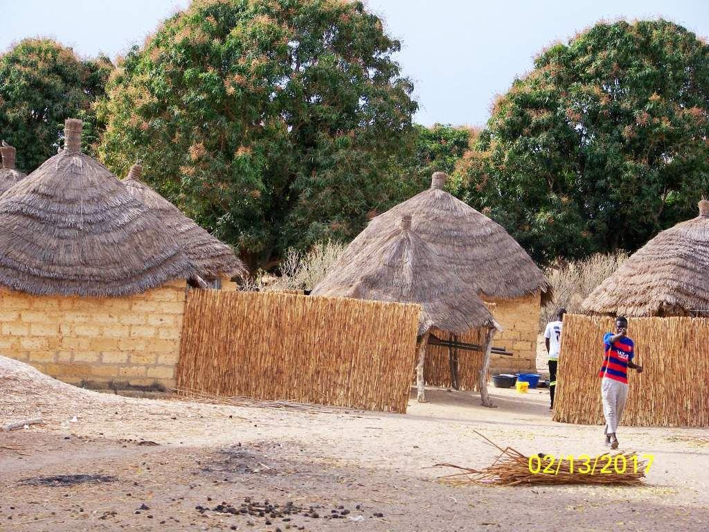 Nous passserons 2 nuits dans un quartier du village de Tabacouta pour bénéficier d'une sortie en pirogue dans la mangrove.