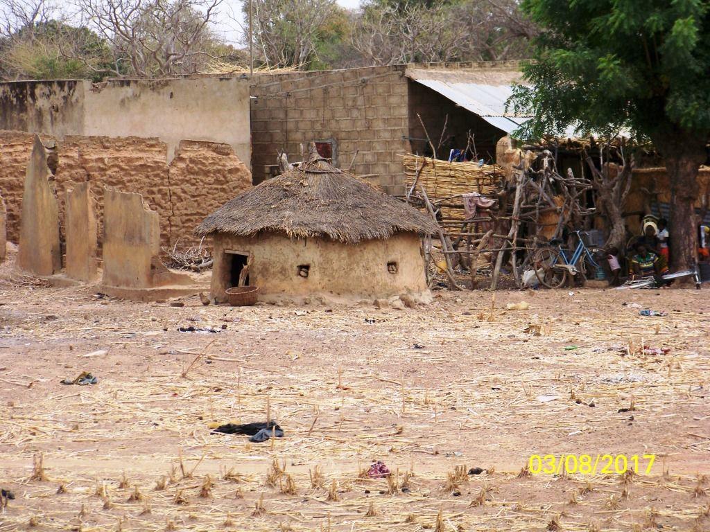 Nous traversons le Burkina d'Ouest en Est pour rejoindre le parc National de l'Arly. Les phacochères et les babouins sont aussi curieux les uns que les autres. En fin de journée nous trouvons un troupeau d'éléphants près du point d'eau. Mais eux ne sont pas contents de cette intrusion et nous obligent à nous sauver en courant...
