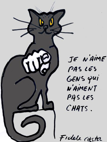 LE 8 AOUT C'ÉTAIT LA JOURNÉE INTERNATIONALE  DU CHAT