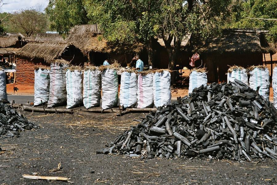 Fabrication Du Charbon De Bois - La réserve de Mandraka Menacée par la fabrication du charbon de bois Agir avec Madagascar