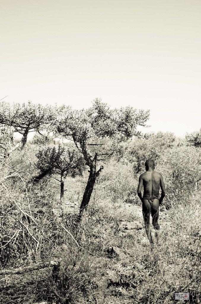 Mikea - Photo Matthieu LOUGARRE - https://www.facebook.com/matlophotographies