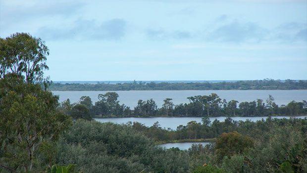 La mer et l'eau douce se mélangent dans les embouchures et les lagunes.