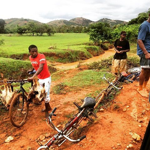 Route d'Ambilobe  -  Photos de Nicolas Vanhove