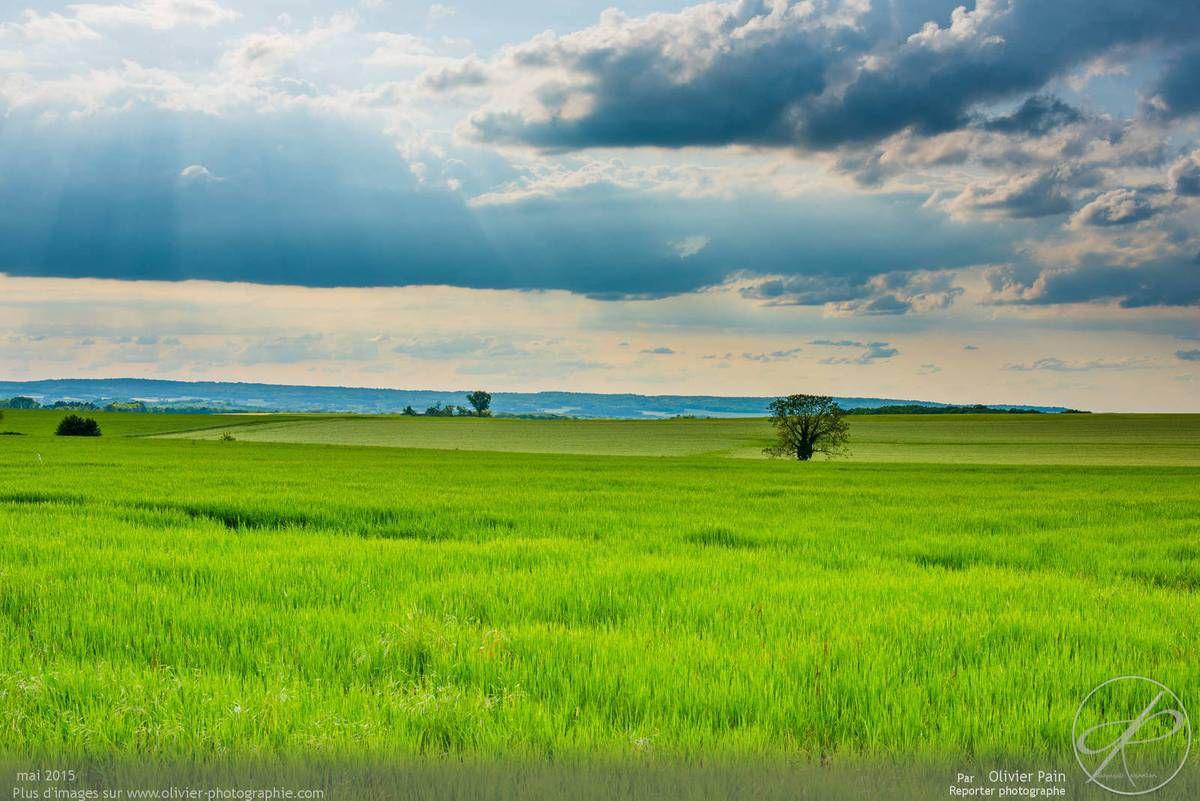 Photographies de paysages de Bourgogne