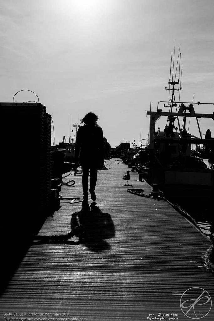 Les photos du jour, 14/07/2015 : Reportage dans le port du Croisic