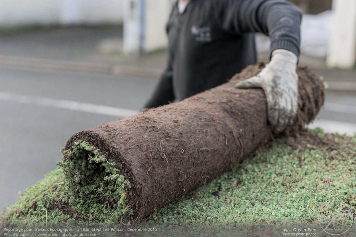 Suivi de chantier a tours, reportage pour la société travaux écologiques, charpentier couvreur et réalisation de toitures végétalisées.