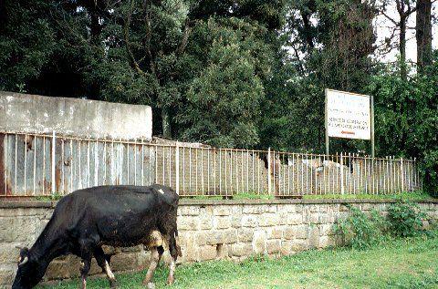 Voilà où je loge au début, le centre d'études franco-éthiopiennes. Et c'est parti pour l'Est éthiopien.
