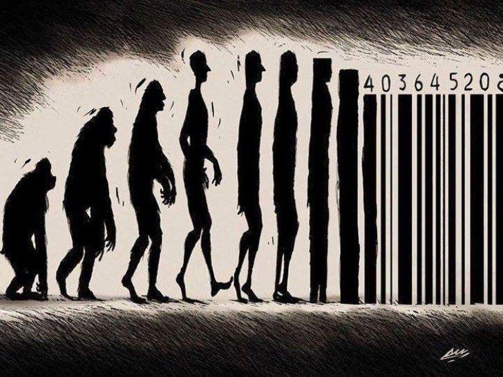 L'évolution en illustration