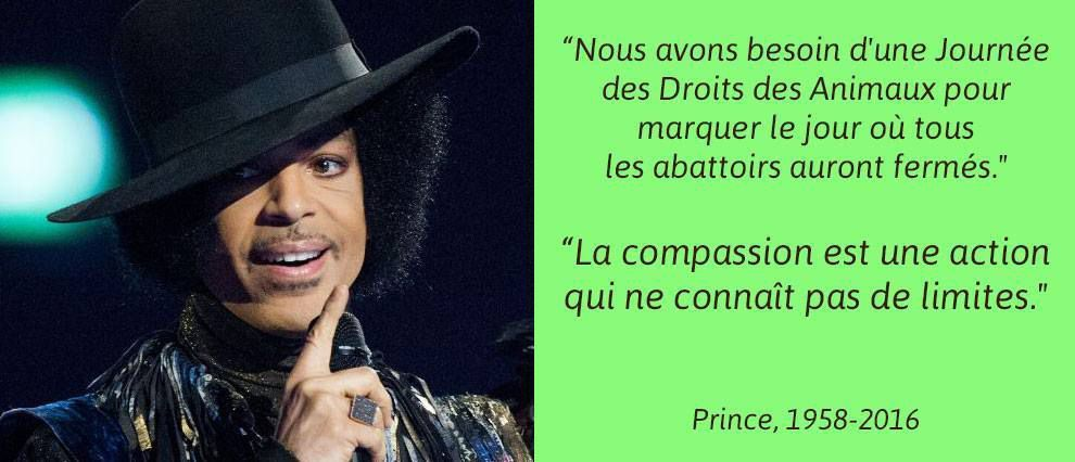 Prince - hommages