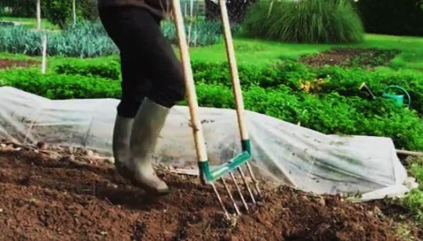 La  Grelinette ou guérillu, aérobêche, fourche écologique au jardin potager bio