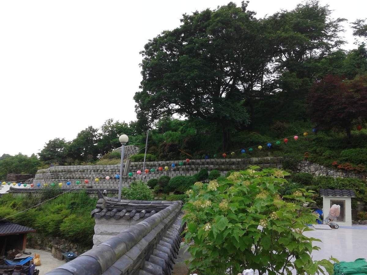 Semaine 1 - Ryujin Farm (1)