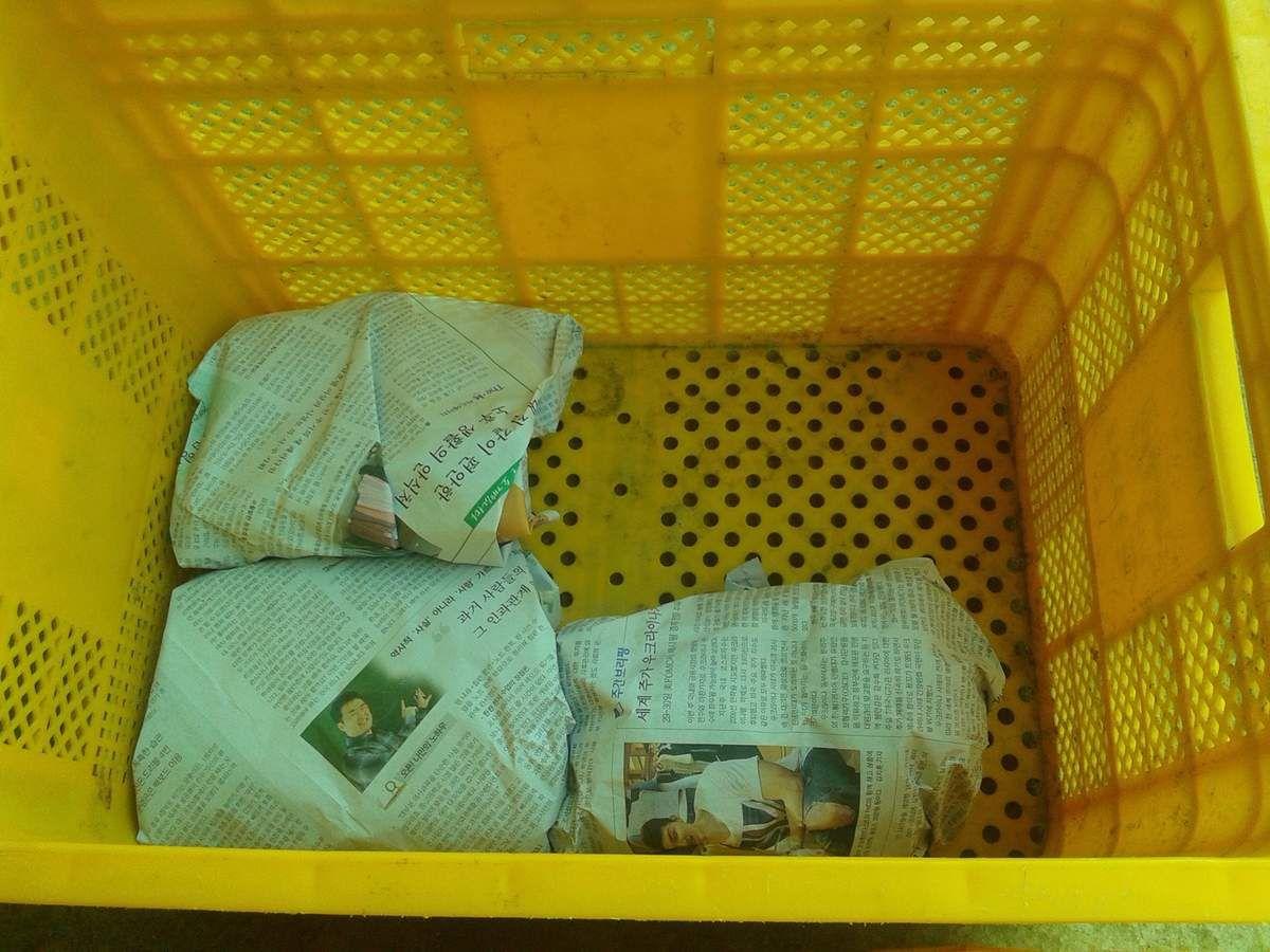 Après la récolte, l'emballage pour envoyer aux clients !