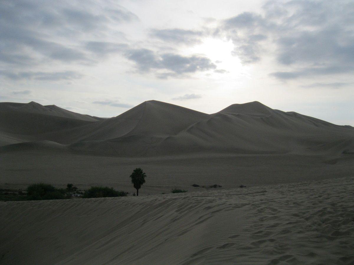 Si on commençait par le désert