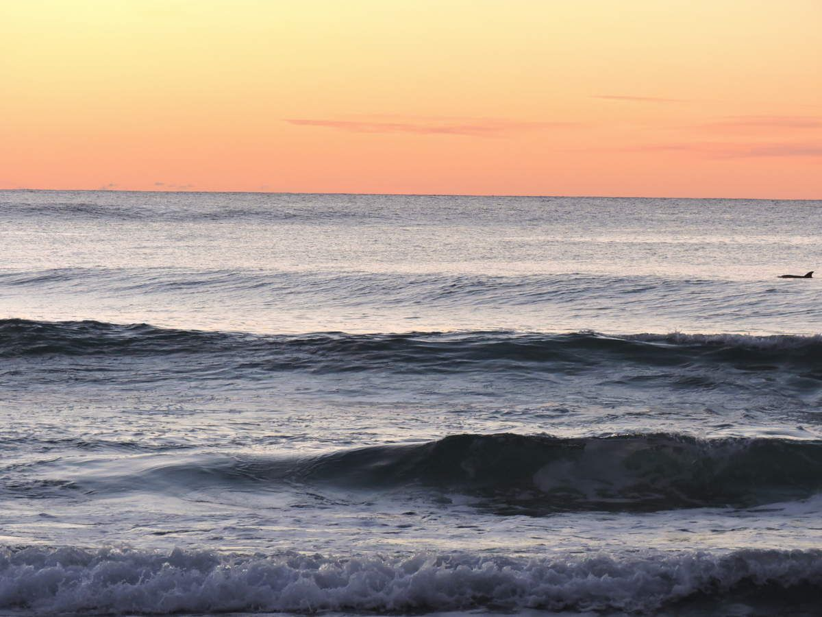 Sunrise depuis Narrawallee Beach