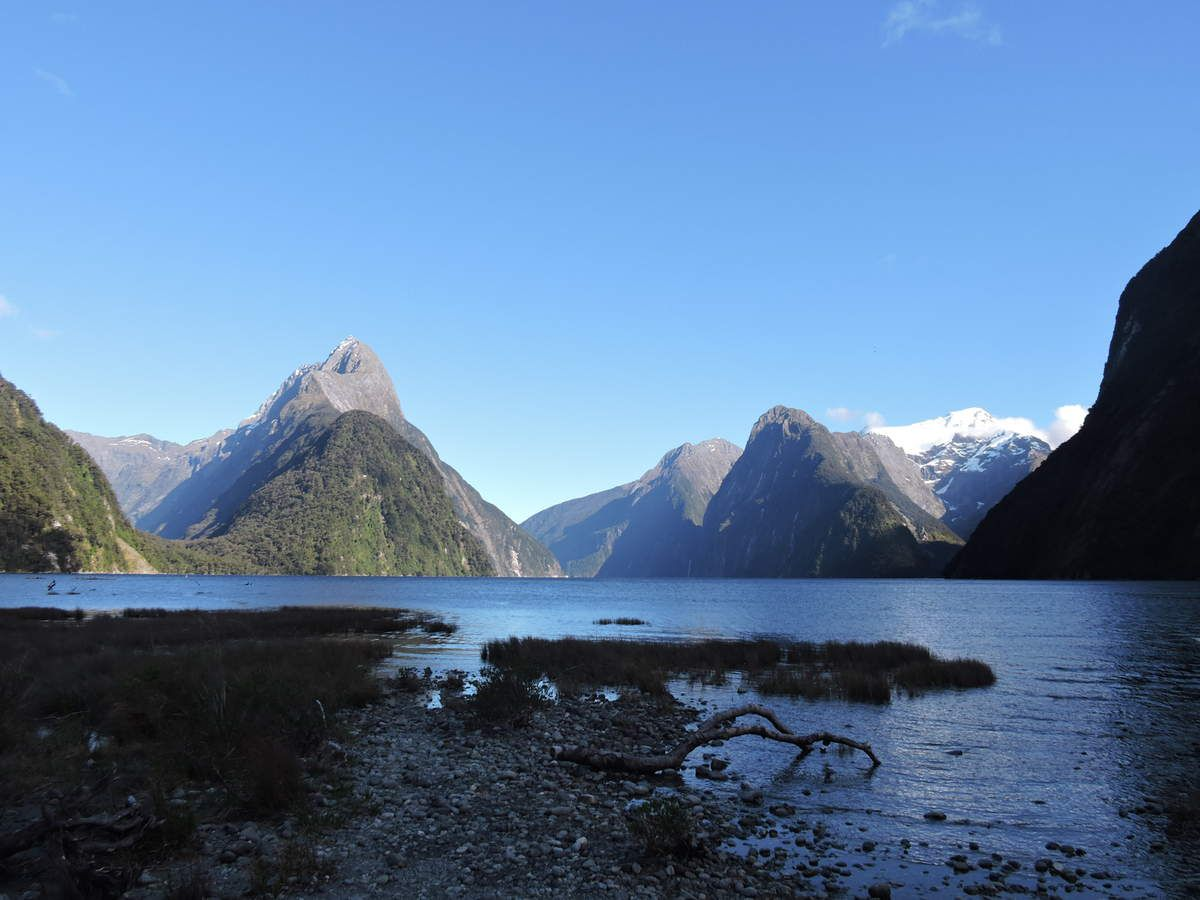Fiordland &amp&#x3B; South West