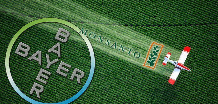 Un monstre est en train de naître: Bayer achète Monsanto pour 66 milliards de dollars