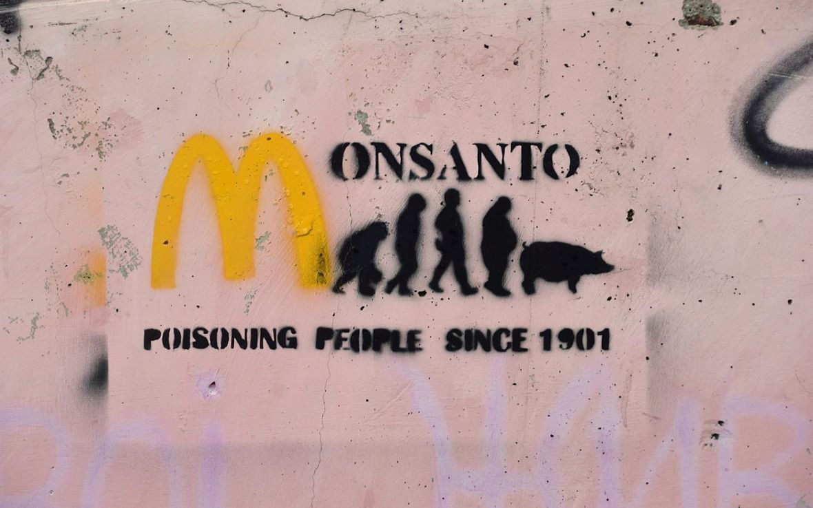 Glyphosate : Monsanto (de nouveau) accusé de corruption scientifique