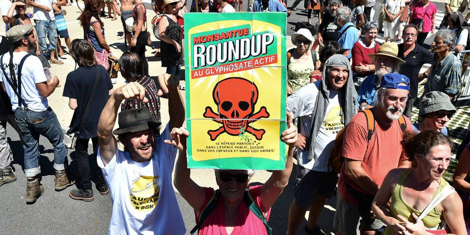Evaluation européenne du glyphosate: Des copiés-collés d'un rapport de Monsanto qui posent question (DOSSIER)