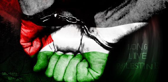 (vidéo) Gaza : La réalité en 1 minute