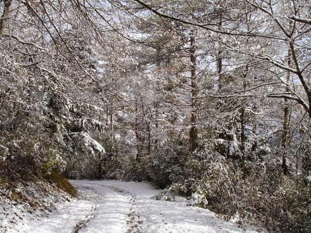 « lave-moi plus blanc que neige » (en février 2015, dans le piémont des Pyrénées ariègeoises)